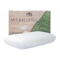 StyleMaster Natural Latex Traditional (Standard) Pillow